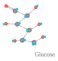 glucose 3d molecule chemical science vector image vector image
