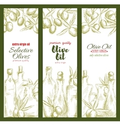 Olive oil sketch banner set for food theme design vector image vector image