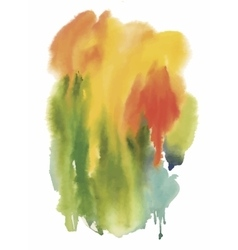 Colorful abstract watercolor texture vector image vector image