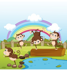 Monkeys and a rainbow vector image vector image