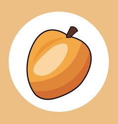 Apricot healthy fresh image vector
