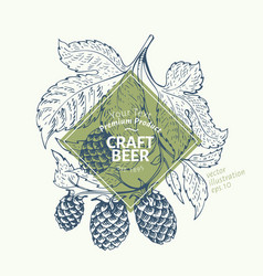beer hop logo template hand drawn hop vector image