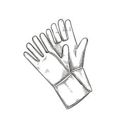 garden rubber gloves sketch style vector image