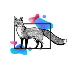 hand drawn fox with frame and abstraction vector image