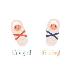 It s a boy or girl card new born swaddled babies vector
