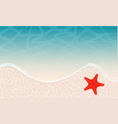 ocean beach with waves and sand and red star-fish vector image