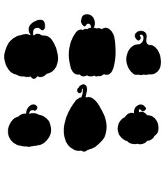 pumpkins collection various types back vector image