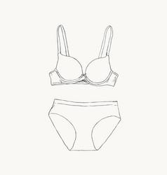 women underwear panties and bra sketch vector image