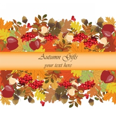 Autumn background with decorations vector image