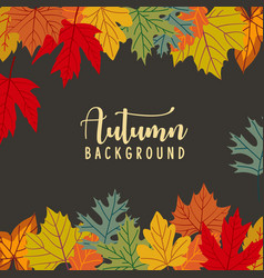 autumn leaves background banner vector image