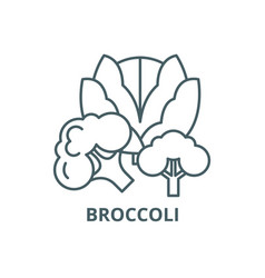 broccoli line icon broccoli outline sign vector image