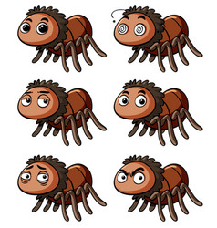 brown spider with different emotions vector image