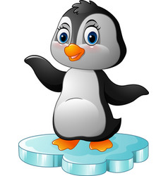 cartoon penguin standing on floe vector image