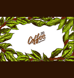 coffee green leaves background in vintage style vector image
