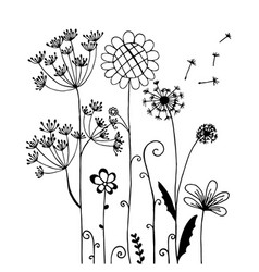 Hand drawn of wild flower and dandelion isolated vector
