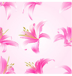 Seamless texture lily pink flowers vector