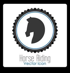horse riding design vector image