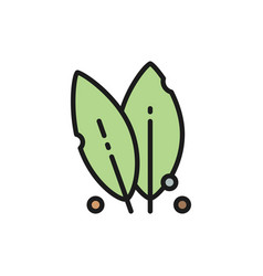 Bay leaf spice herb flat color line icon vector