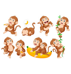 collection monkey in different poses vector image