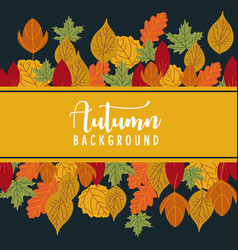 colorful autumn leaves on a old paper back vector image