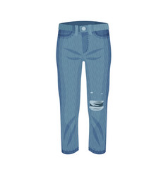 Denim blue ripped pair jeans with side pockets vector