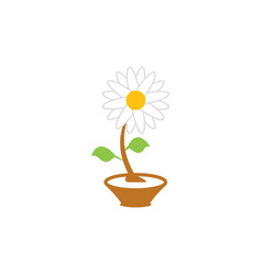 flower graphic design template isolated vector image