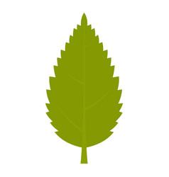 Green hornbeam leaf icon isolated vector
