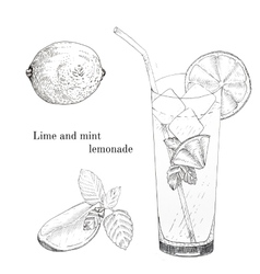 Lime and mint lemonade ink sketch set vector