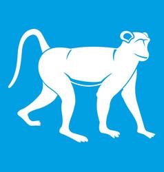 Monkey icon white vector