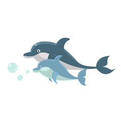 big and small dolphins swim together isolated vector image