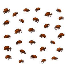 Many fleas vector