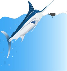 Marline fishing vector