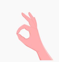 okay hand sign human hand shows ok vector image