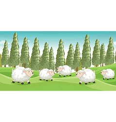 Smiling sheeps vector image vector image