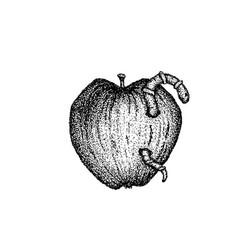 Wormy apple dotwork vector