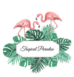 tropical paradise banner border frame decorated vector image vector image