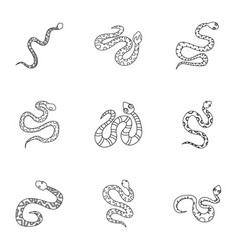 wild snake icon set outline style vector image