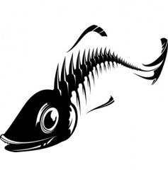 fish skeleton vector image