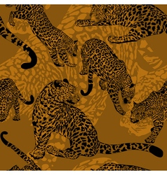 pattern with wild leopard vector image