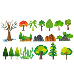 different types of trees vector image