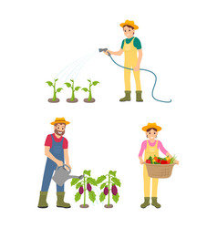 farmer people watering plants vector image