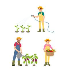 Farmer people watering plants vector