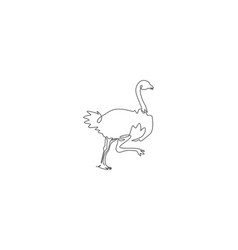 Single continuous line drawing cut ostrich vector