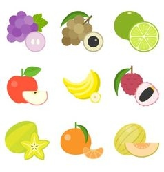 Fruit icons set 4 vector image