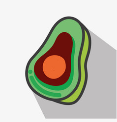 Delicious avocado tasty fruit icon vector