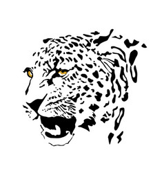Drawing a spotted leopard vector