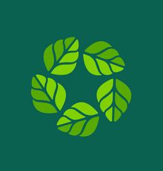 Eco leaves star wreath logo icon design template vector