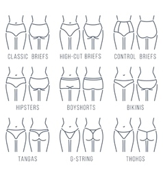 Female underwear panties types thing line vector image