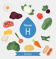 Vitamin h or biotin infographic vitamin h or vector