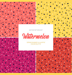 watermelon set with 4 backgrounds pink vector image
